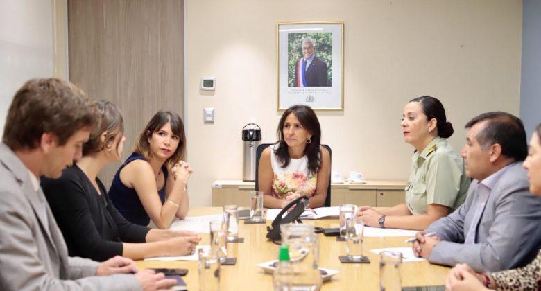 """Ministra (s) Cuevas: """"Vamos a resguardar el derecho de todas las mujeres, queremos que sea un día de unidad, donde podamos mirar hacia el futuro"""""""