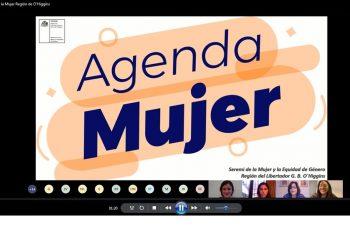 Seremi O'Higgins da a conocer la Guía de Violencia y la Agenda Mujer a funcionarios de Fundación Integra