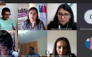 Seremi de la Mujer de Magallanes capacitó a funcionarios de Sernac para dar primera respuesta a mujeres que viven violencia
