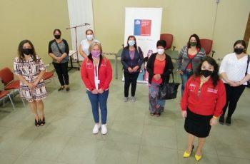Seremis de la Mujer y Justicia presentaron la iniciativa: En Pemuco lanzan campaña que promueve la denuncia de casos de violencia de género en zonas rurales